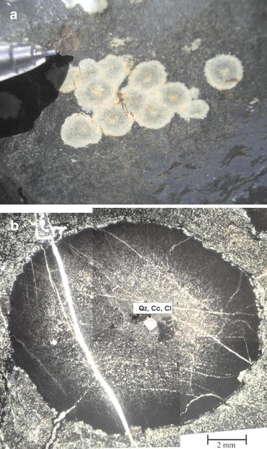 The origin of large varioles in flow-banded pillow lava from