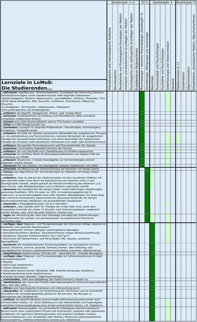 Das longitudinale Modul Schmerzmedizin (LoMoS) | SpringerLink