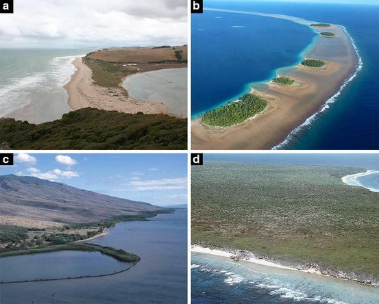 Pacific Islands Ichthyoarchaeology: Implications for the