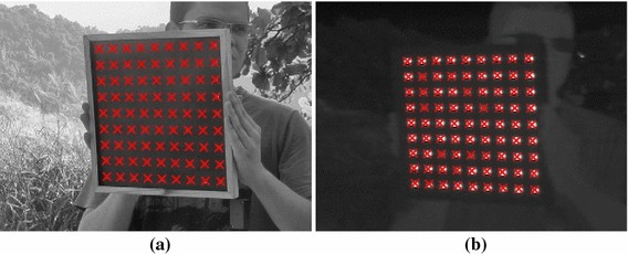 A visible-light and infrared video database for performance