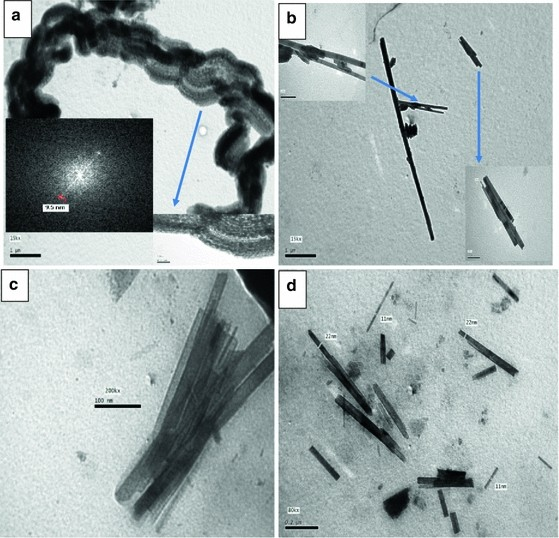 Morphological investigation and magnetic properties of
