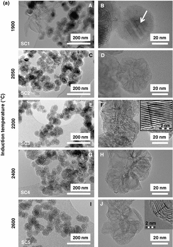 Synthesis of novel carbon nanostructures by annealing of