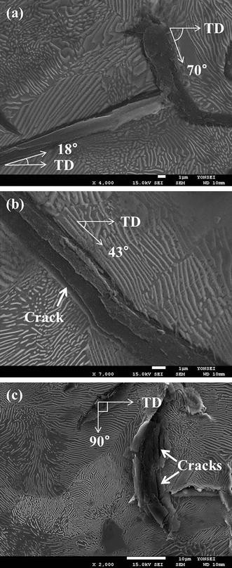 Inhomogeneity of Microstructure and Damping Capacity of a