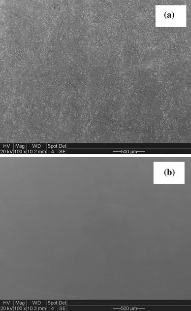 Inhibitive Performance of a Rust Converter on Corrosion of Mild