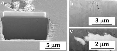 Heavy Liquid Metal Corrosion of Structural Materials in