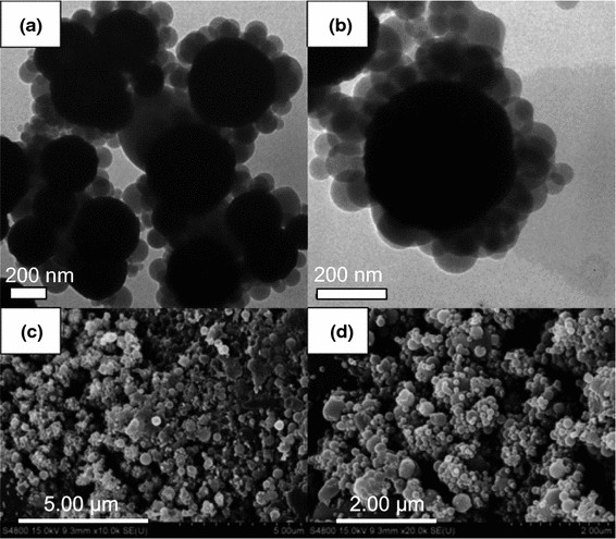 Micro- and nanoporous materials capable of absorbing