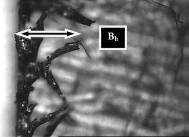 Optimization of Micro-milling Parameters Regarding Burr Size