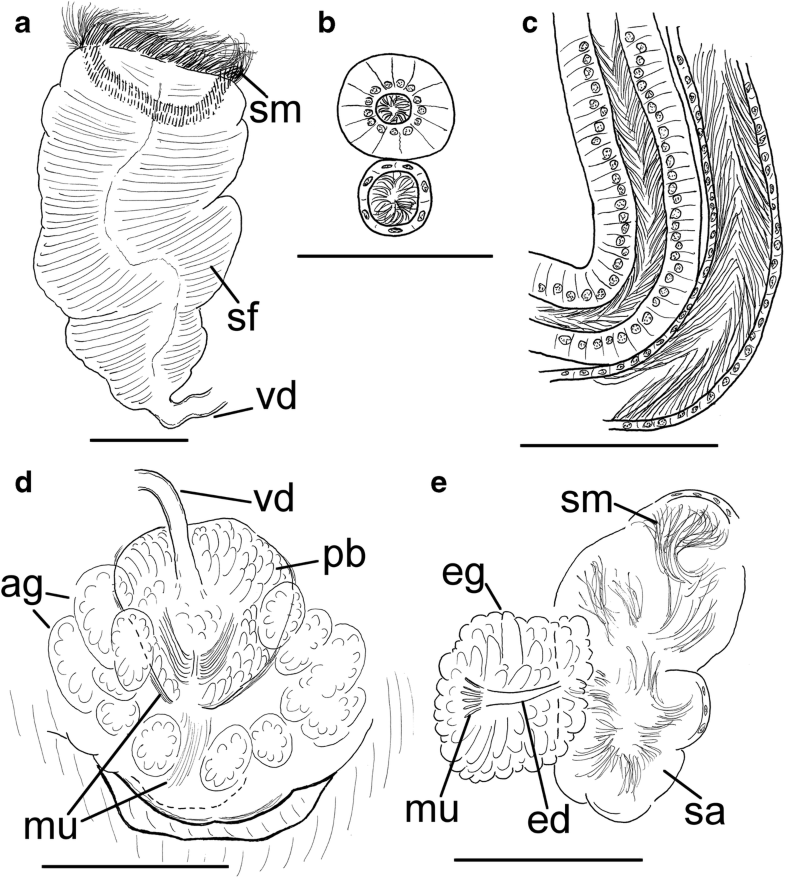 Fig. 11