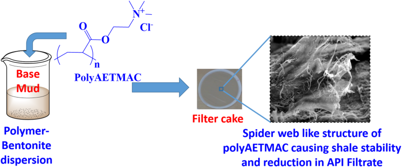 Shale inhibition by low-molecular-weight cationic polymer in