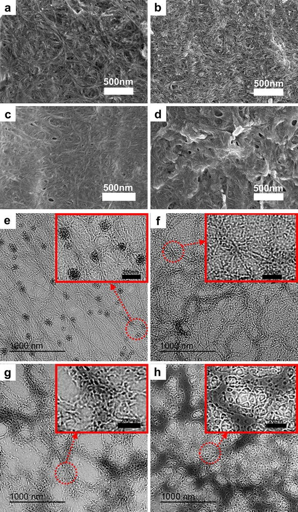 Fabrication and characterization of differentiated aramid