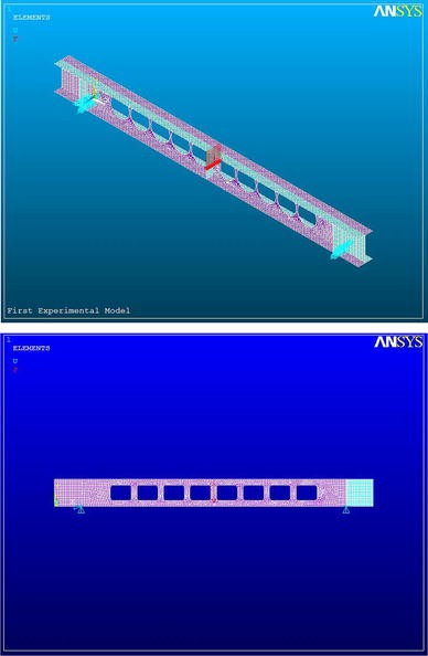 An experimental and parametric study on steel beams with web