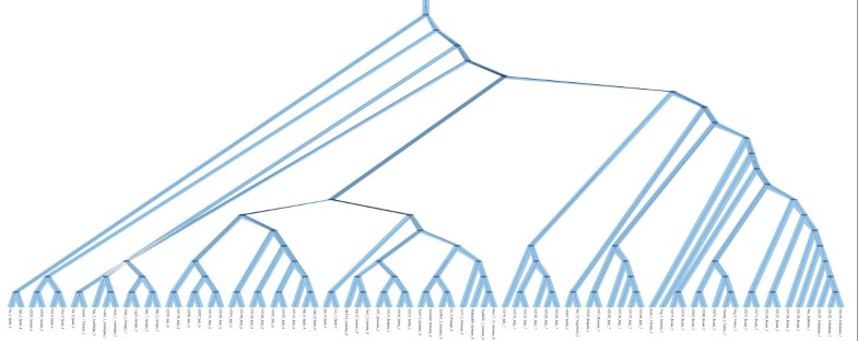 Figure 3