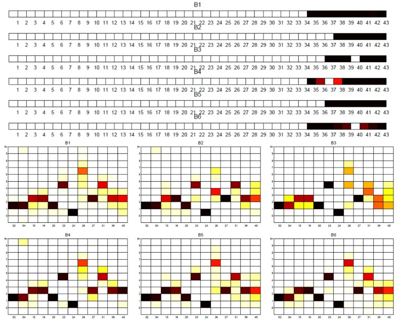 Sublineage structure analysis of Mycobacterium tuberculosis complex