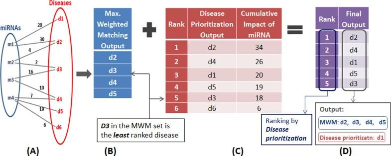 DISMIRA: Prioritization of disease candidates in miRNA