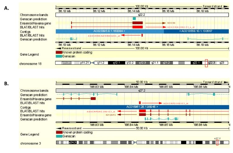 The Colorectal cancer disease-specific transcriptome may