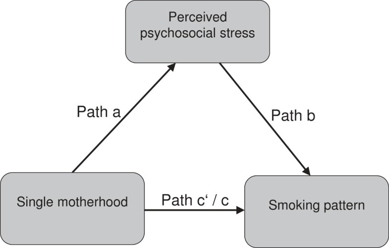 effect of single mothers stress on Korean mothers reported greater parenting stress, yet experienced lower child behavior problems than american mothers however, the american mothers associated their.