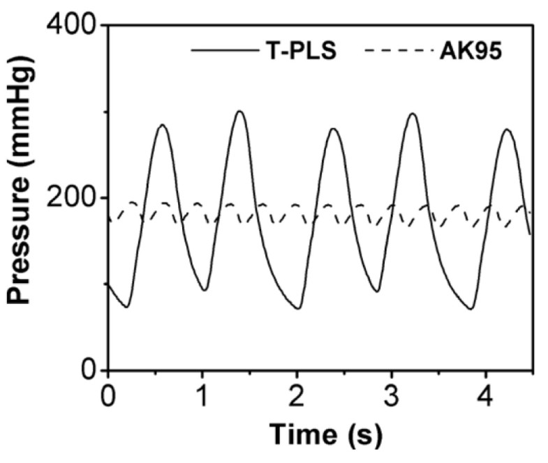 computational assessment of the effects of a pulsatile