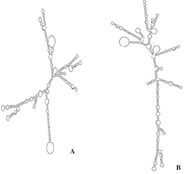 Figure S1