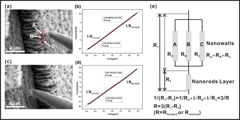 highly conductive vertically aligned molybdenum nanowalls