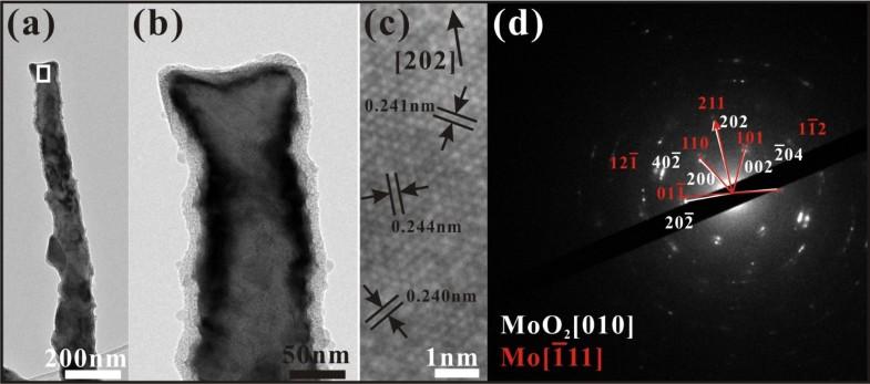 Highly conductive vertically aligned molybdenum nanowalls