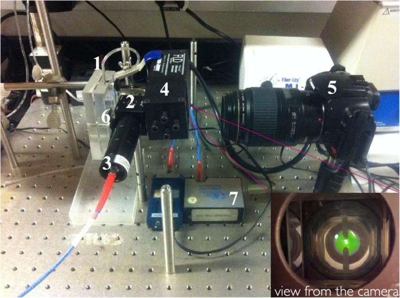 Monitoring Of Degradation Of Porous Silicon Photonic