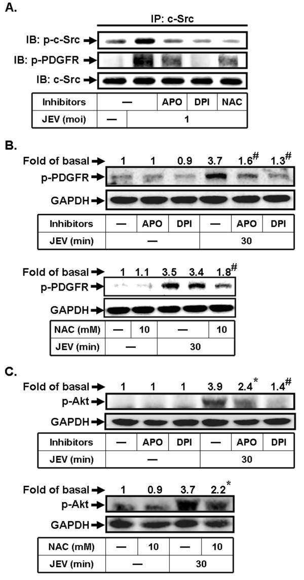 Figure 7517