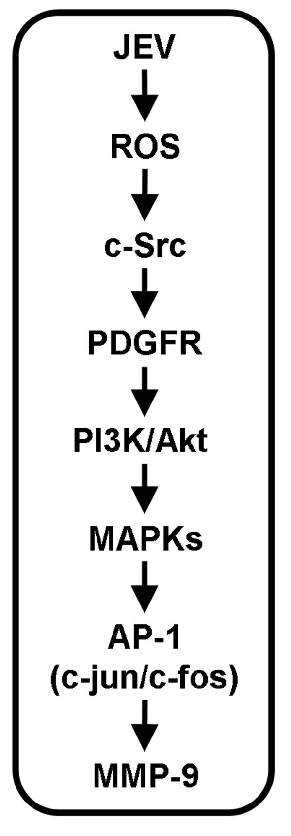 Figure 8517