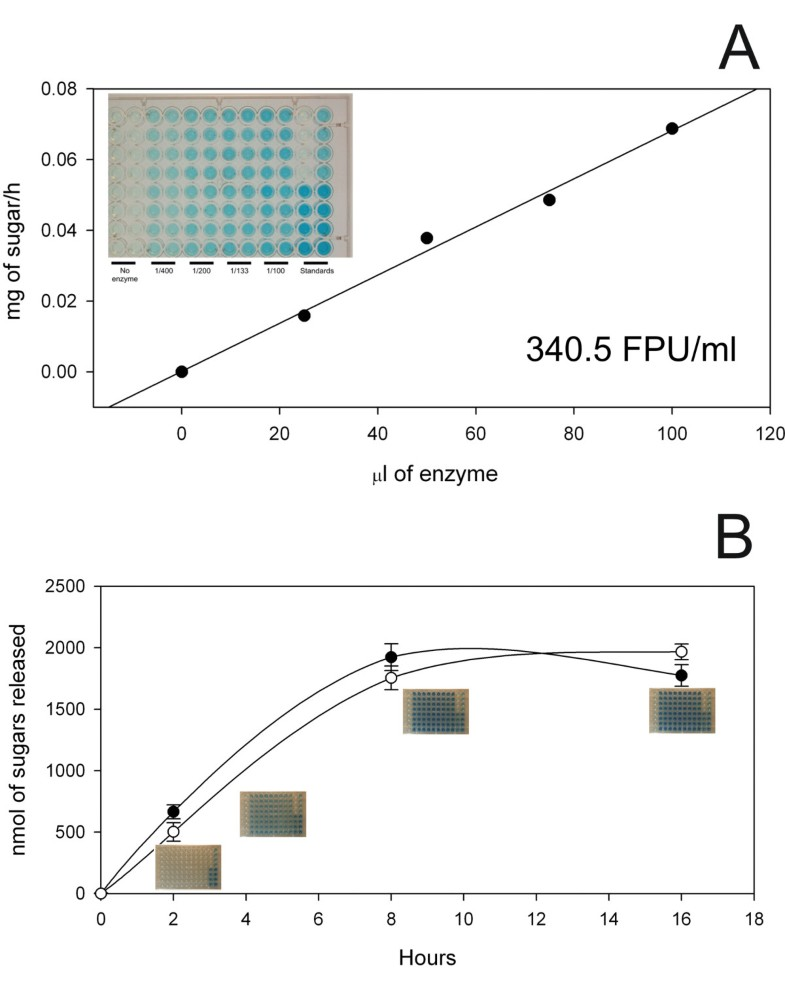 automated filter paper assay determination cellulase activity The present paper is concerned with the applica- tion of this system of analysis to  the determination of enzyme activities  the filter permitted the passage of light  primarily at 680 rnp and  procedure for automated enzyme determinationsthe.