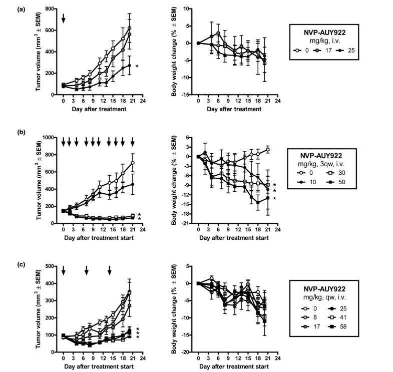 APExBIO - AUY922 (NVP-AUY922)|Potent Hsp90 inhibitor|CAS