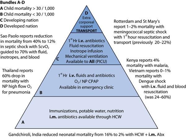 Sepsis guideline implementation: benefits, pitfalls and