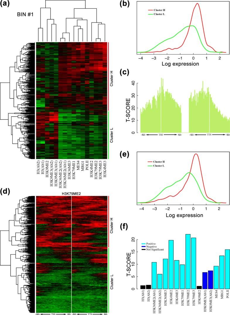 A statistical framework for modeling gene expression using chromatin
