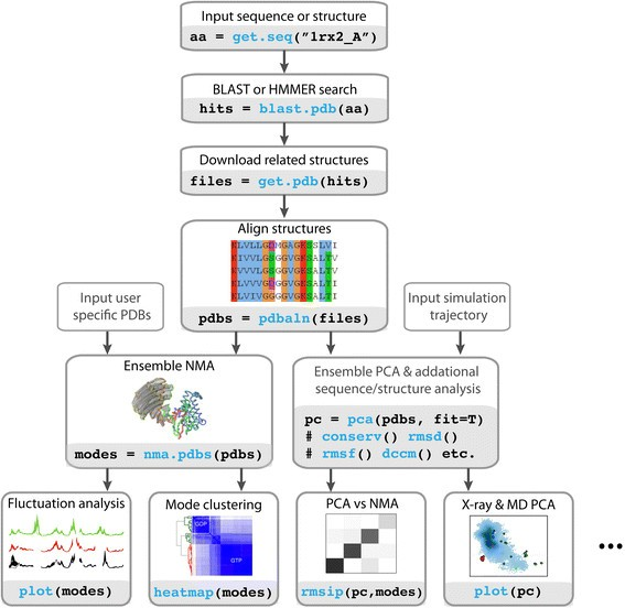 Integrating protein structural dynamics and evolutionary