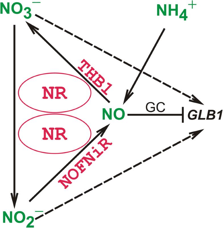 Fig. 7