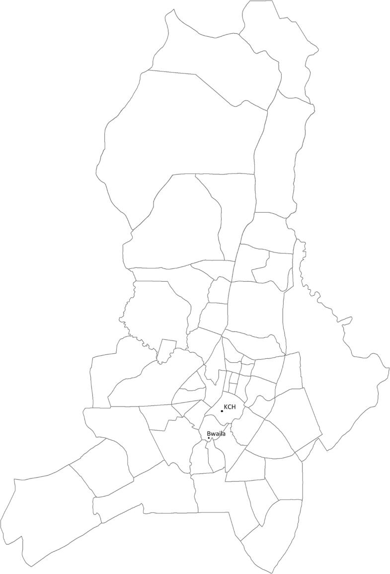 Fig. 1