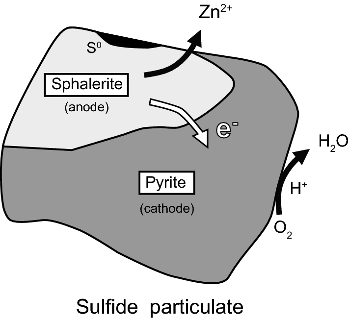 Fig.7