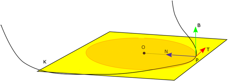 Fig. 5