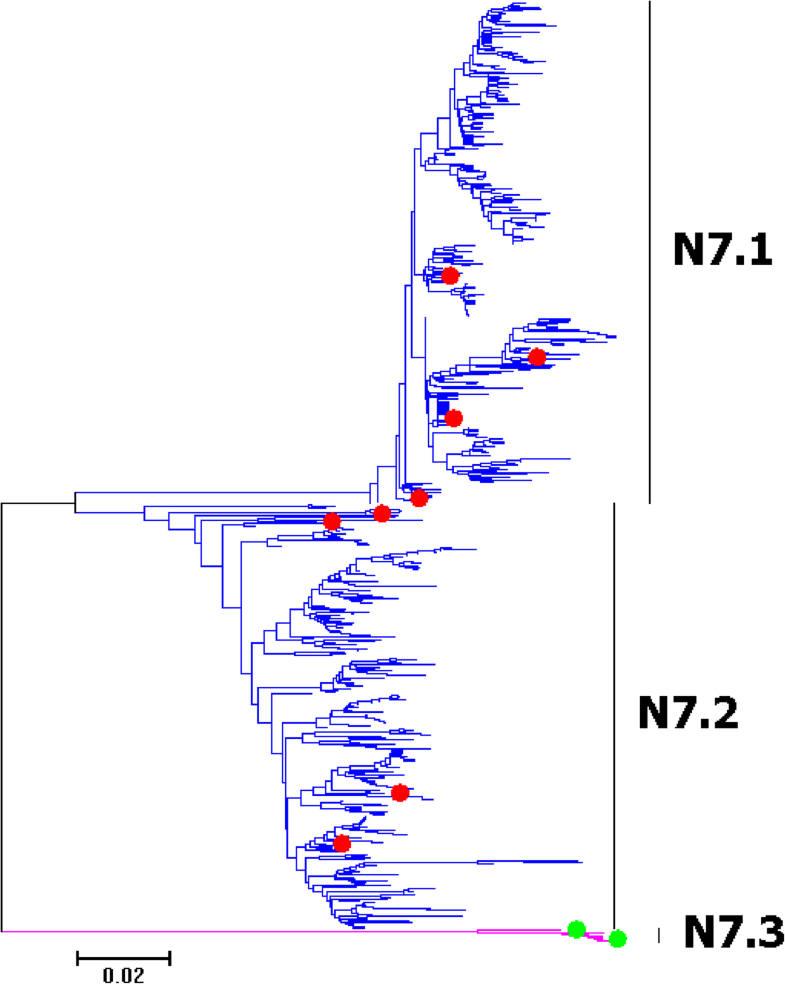 Fig. 24