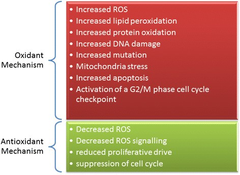 Dual effect of oxidative stress on leukemia cancer induction and