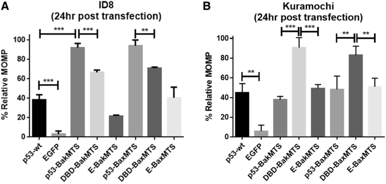 Mitochondrially Targeted P53 Or Dbd Subdomain Is Superior