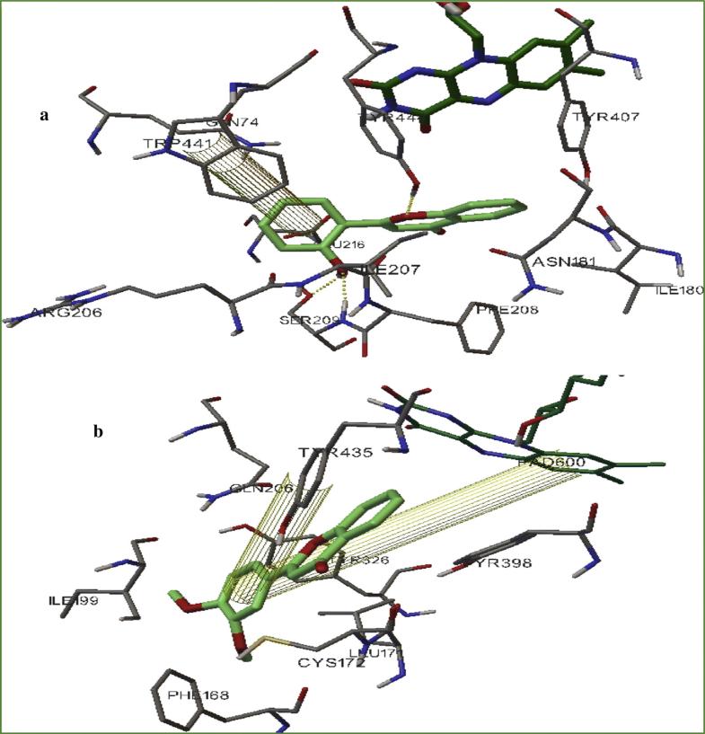 Molecular Docking Studies Of Coumarin Hybrids As Potential
