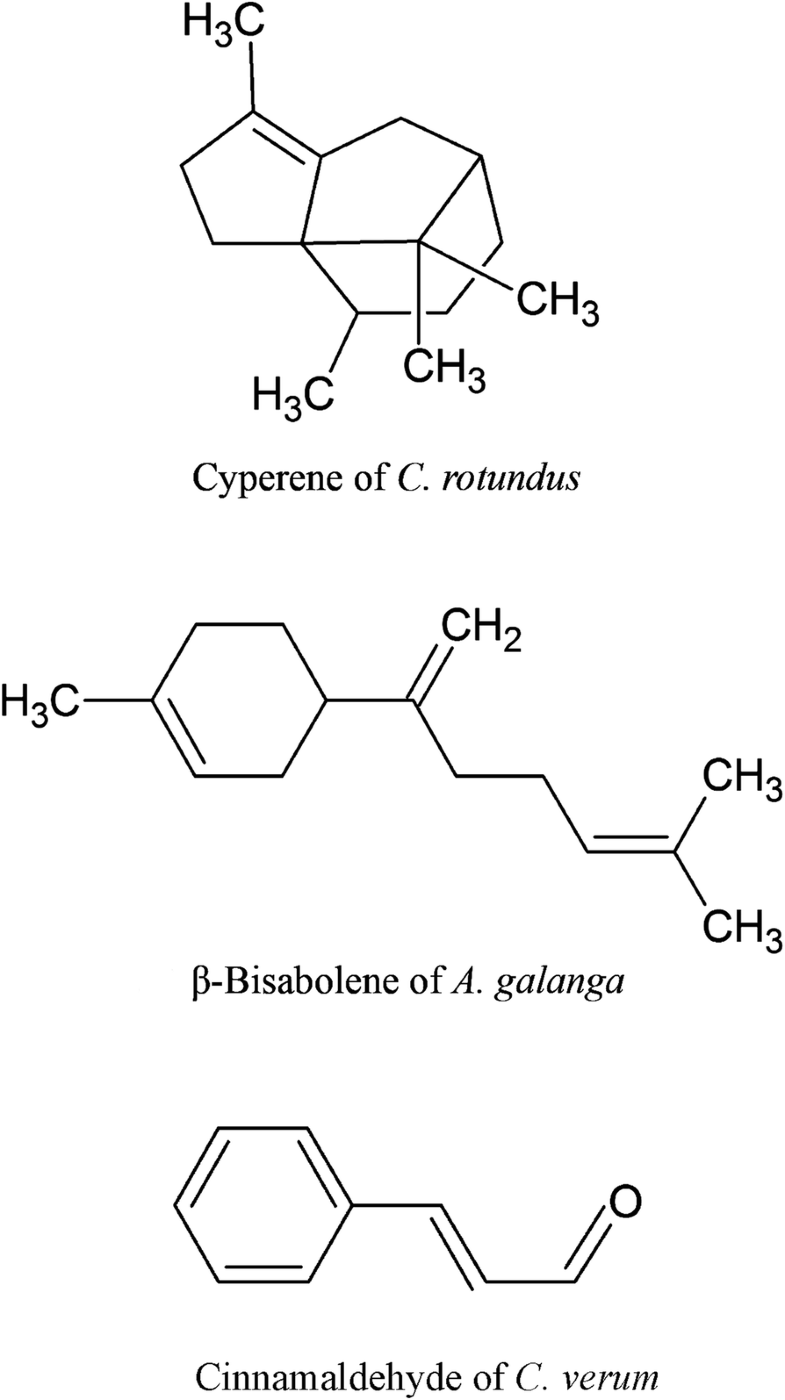 Fig. 2