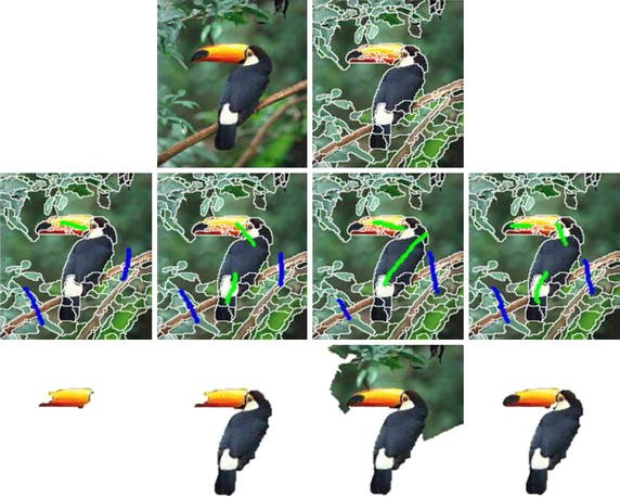 Object segmentation by saliency-seeded and spatial-weighted