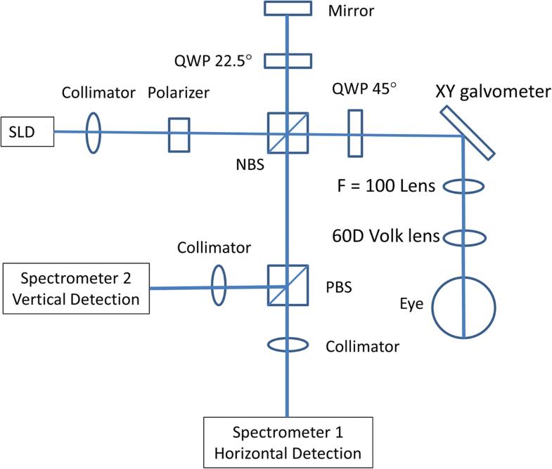 Altered Birefringence Of Peripapillary Retinal Nerve Fiber