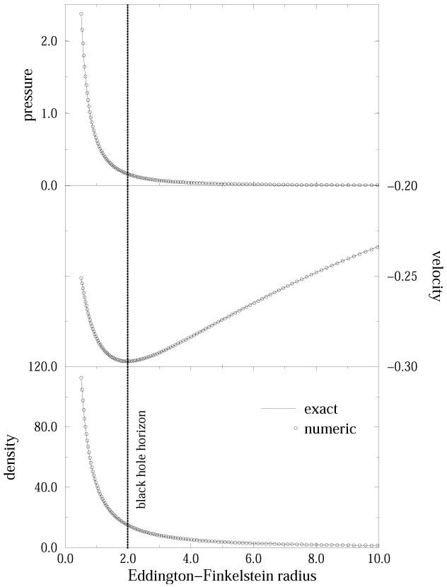 Numerical Hydrodynamics in General Relativity | SpringerLink