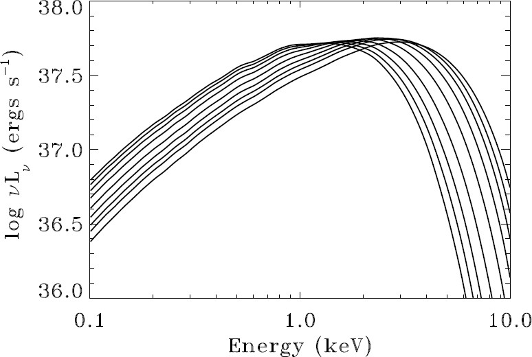 Probes And Tests Of Strong Field Gravity With Observations In The