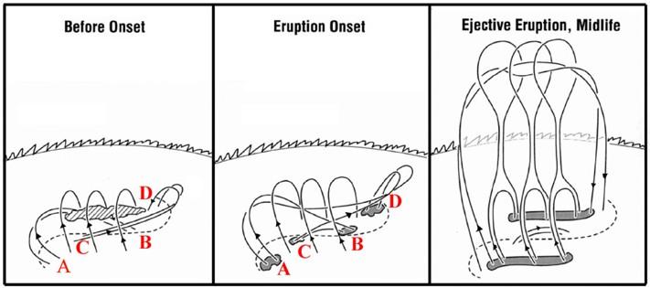 Figure 11: