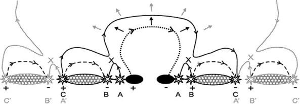 Figure 38:
