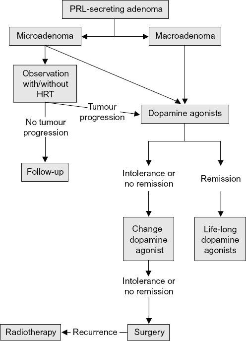 Pituitary Disorders | SpringerLink
