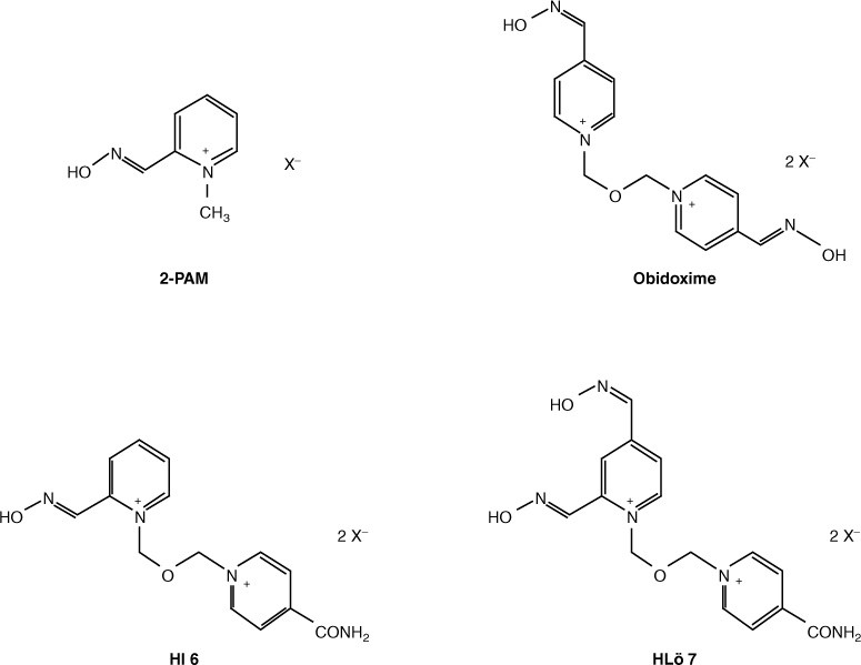 The Role of Oximes in the Management of Organophosphorus Pesticide