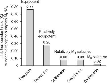 Safety and Tolerability Profiles of Anticholinergic Agents